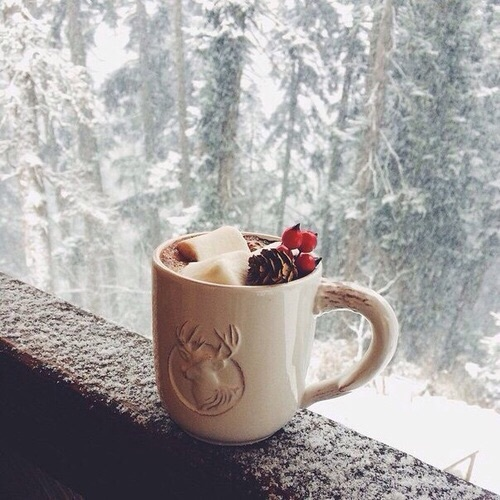 christmas, coffee, cold, cool, cute, december, drink, drinks, forest ...
