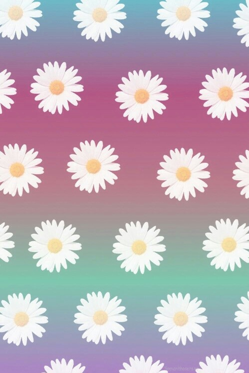 Background Flores Flowers Fondo Image 4014008 By Winterkiss On