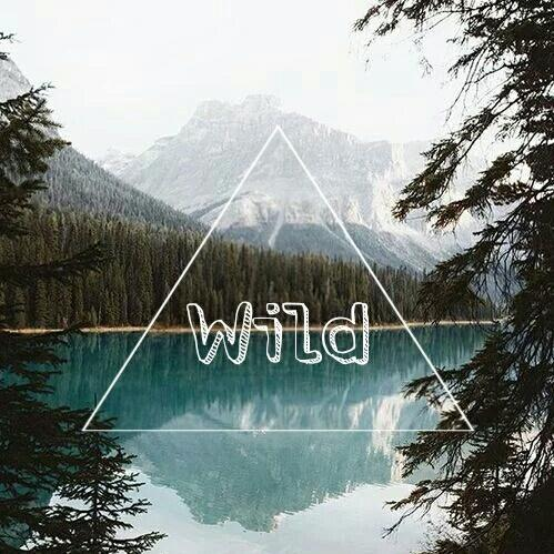 background, blue, cold, fall, fly, freedom, happiness, lake, landscapes, mountain, photography, sky, spring, summer, triangle, tumblr, wallpaper, water, wild, winter