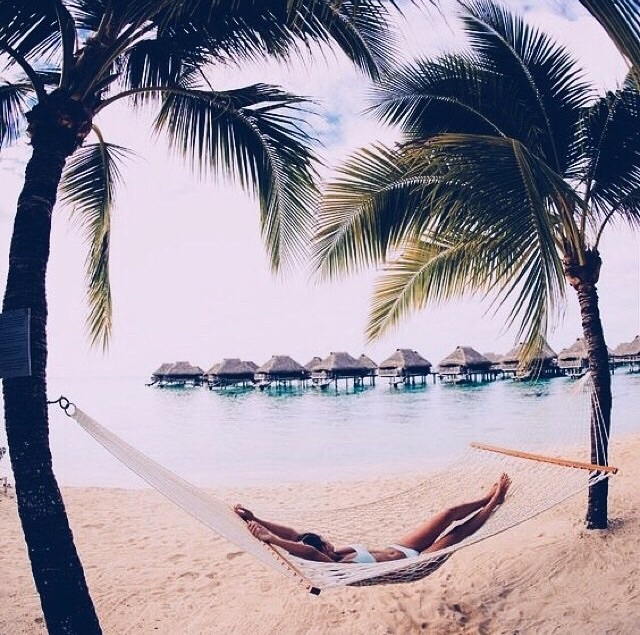 beach, goals, hammock, holiday, inspiration, inspo, love, palmtrees, relax, sun, tropical, tumblr