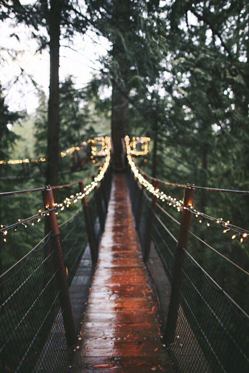 fairy lights, bridge, daylight, colours, rain