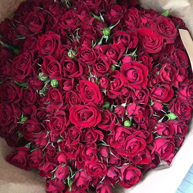 chic, pink, flowers, roses, fleurs
