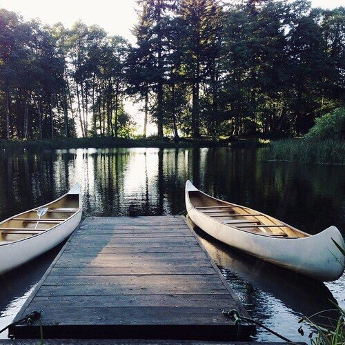 aesthetic, boats, lake, trees, water
