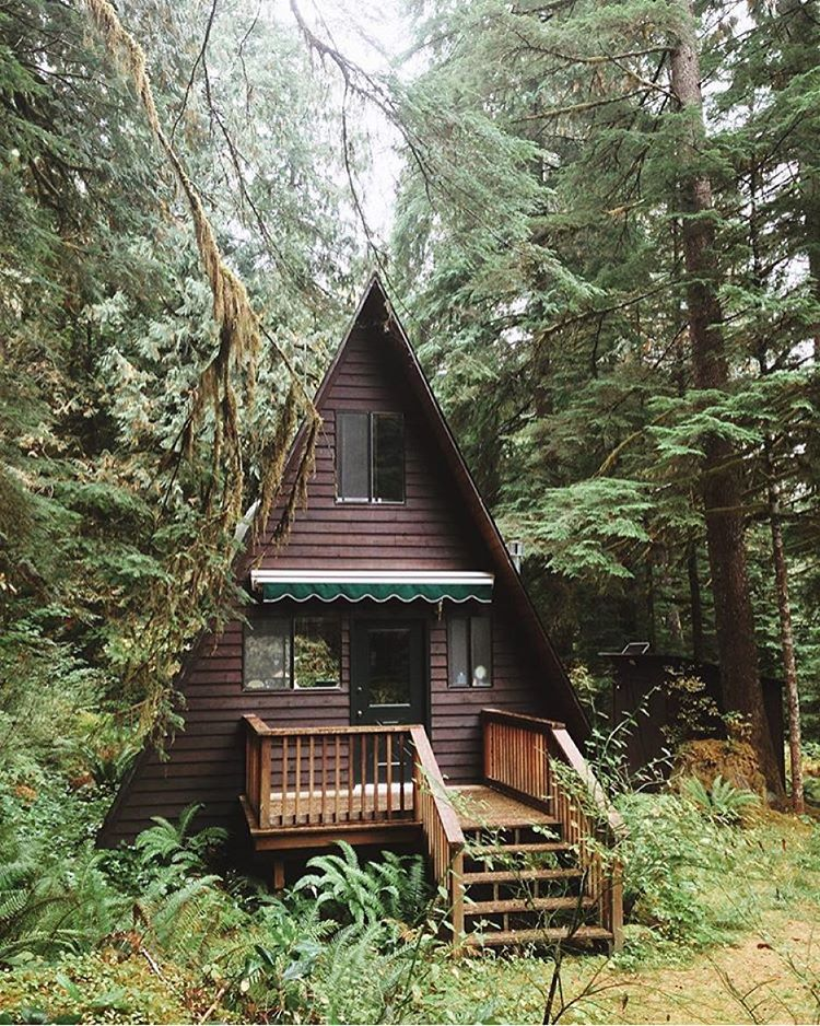 cabin, cottage, forest, nature, woods