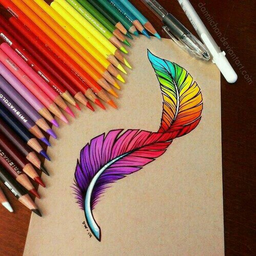colour, drawing, feather, paper, pencils