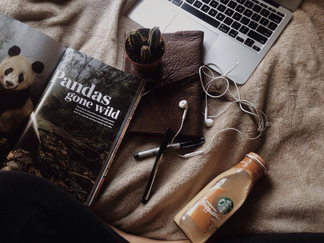 bed, books, coffee, cool, feed