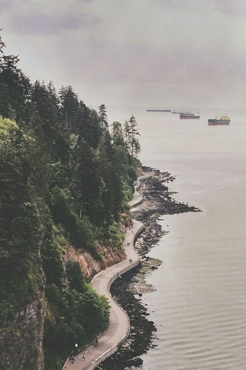 boats, forest, gray, lake, nature