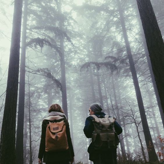 forest, girl, pale, path, photography