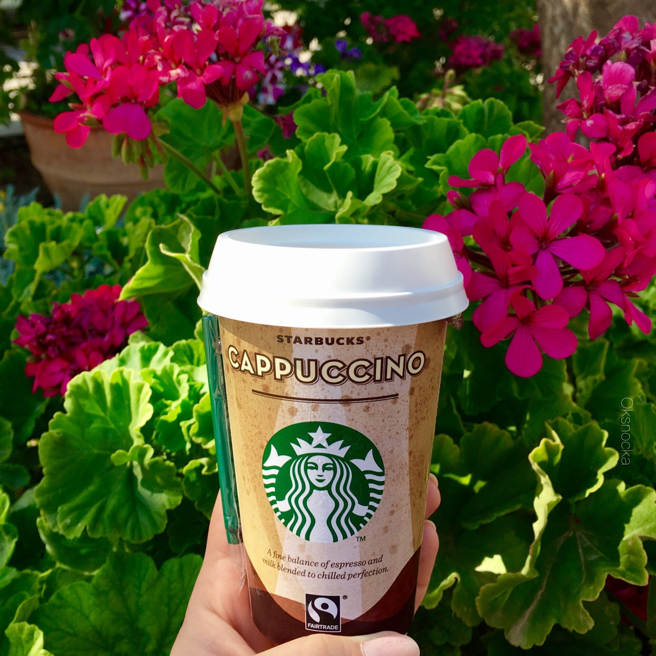 beauty, cappuccino, coffee, drink, flowers