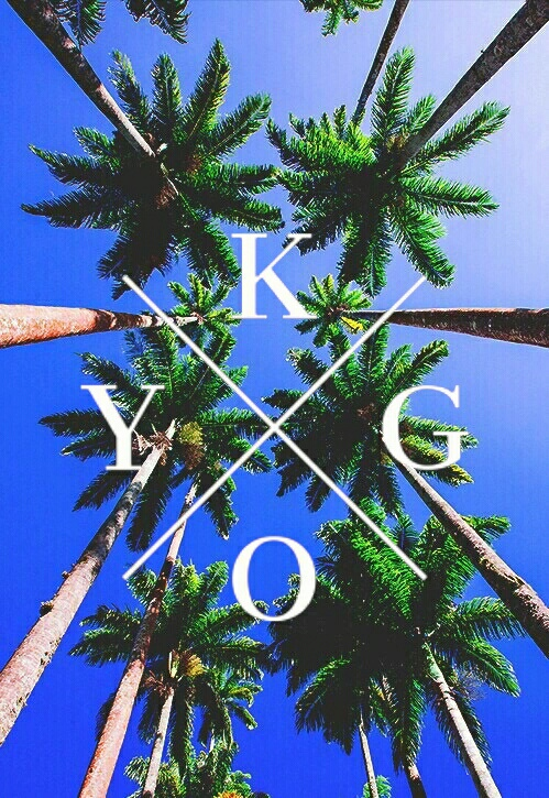 palm trees, palms, summmer, lockscreen, kygo