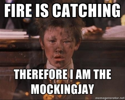 catching fire, hunger games and mocking jay