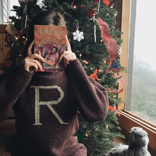 book, christmas, decor, decorations, harry potter
