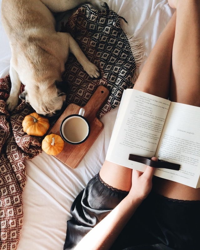 autumn, book, cafe, coffee, cold
