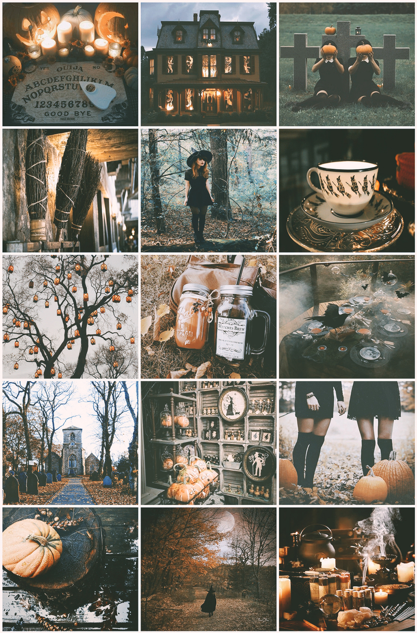 aesthetic, autumn, fall, forest, grunge