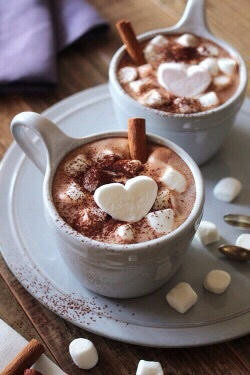 chocolate, cookie, cozy, drink, hot chocolate