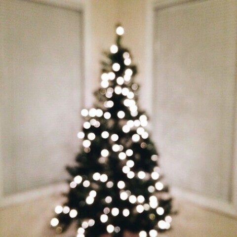 christmas, christmas is coming, christmas tree, holiday, light