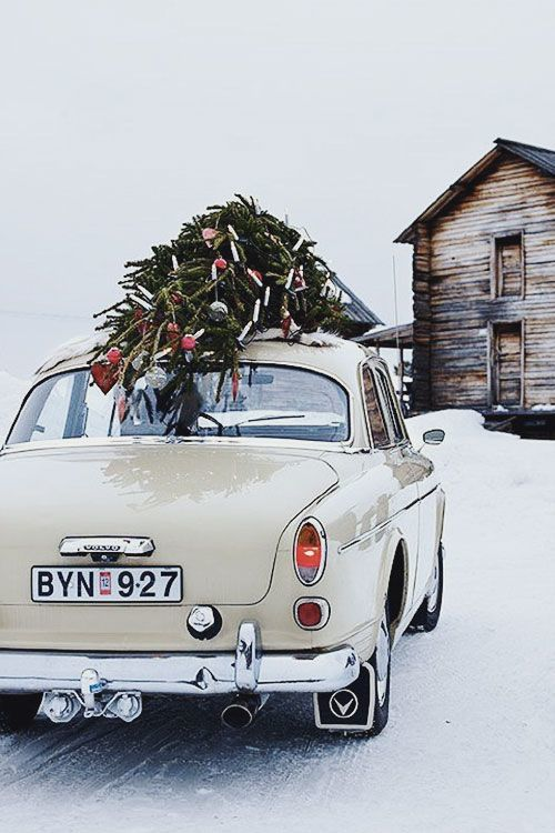 christmas, christmas tree, happy holidays, merry christmas, old car