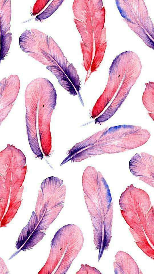 backgrounds, colors, cool, feathers, pink