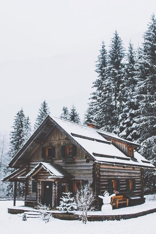 cabin, christmas, snow, we heart it