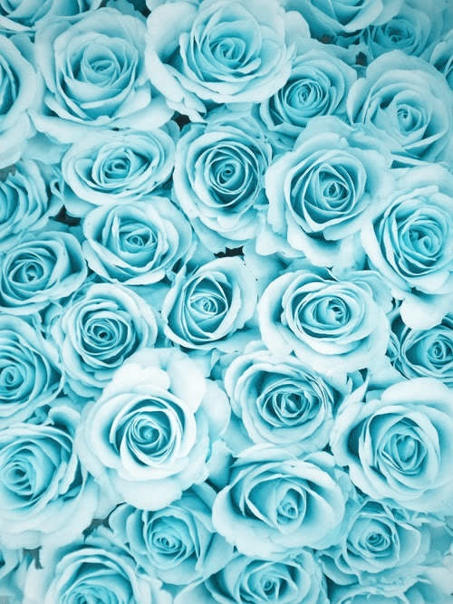 aesthetic, baby blue, blue, color, colors