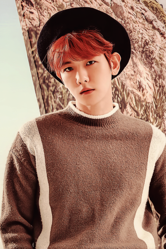 artist, asian boy, baekhyun, chanyeol, chen