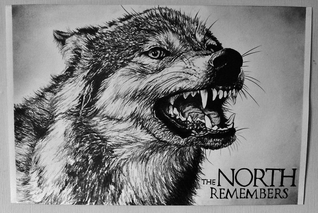 art, black and white, drawing, game of thrones, wolf