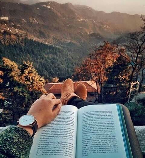 autumn, book, book nerd, morning, nature