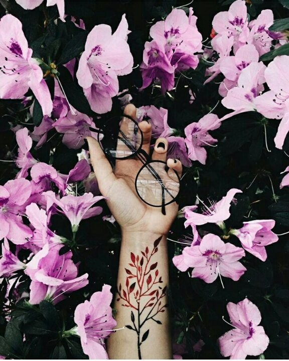 glasses, pink flowers, Photography hand, photography flowers