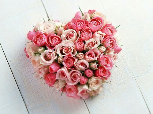 bloom, flowers, love, mon amour, valentines day