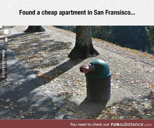 apartment, awesome, cheap, funny, humor