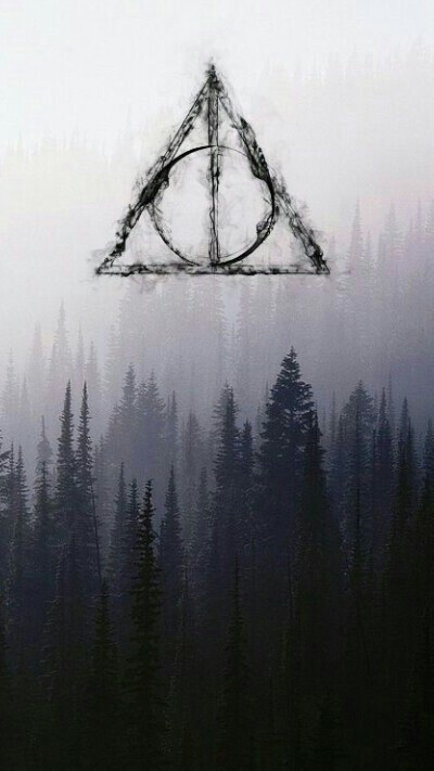 forest, harry potter, night, wallpaper