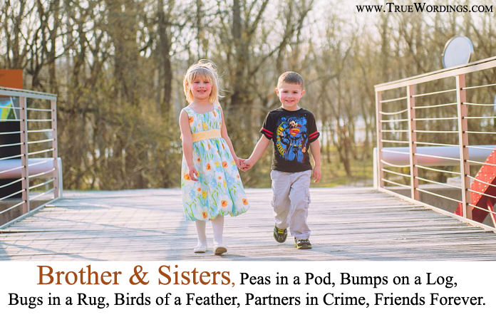 brother, sister, brother sister and Sister Quotes
