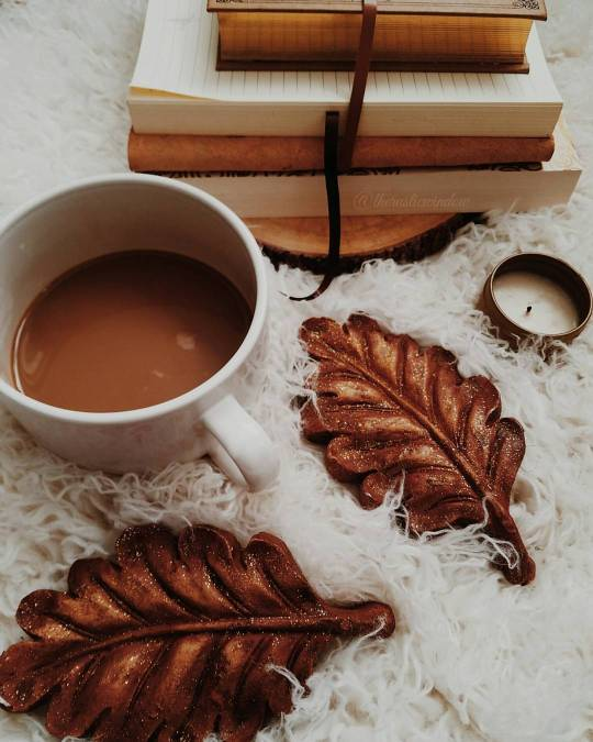 autumn, books, cozy, fall, hot chocolate