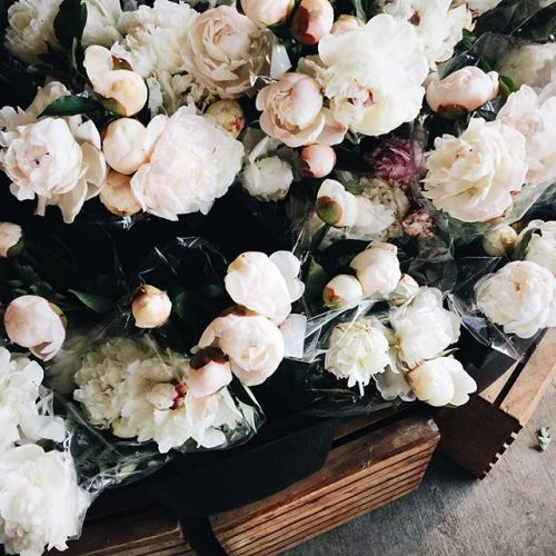 beautiful, bouquet, gift, melancholy, misc
