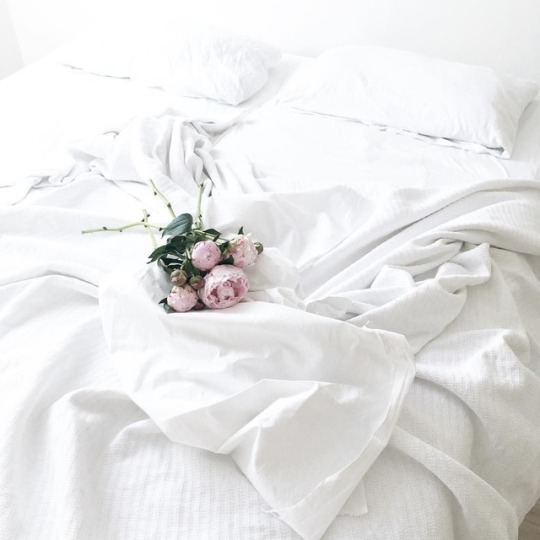 bed, bouquet, flower, flowers, peonies