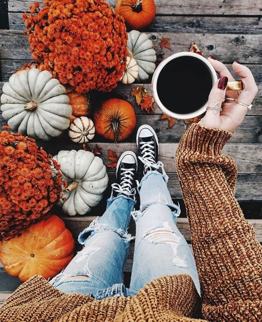 autumn, coffee, fall, girl, pumpkin
